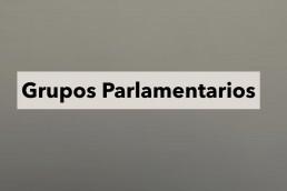 4k Media Service, Grupos Parlamentarios, 1